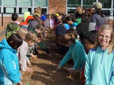 second graders planting
